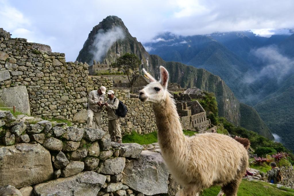 Machu Picchu-7